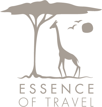 Essence of Travel